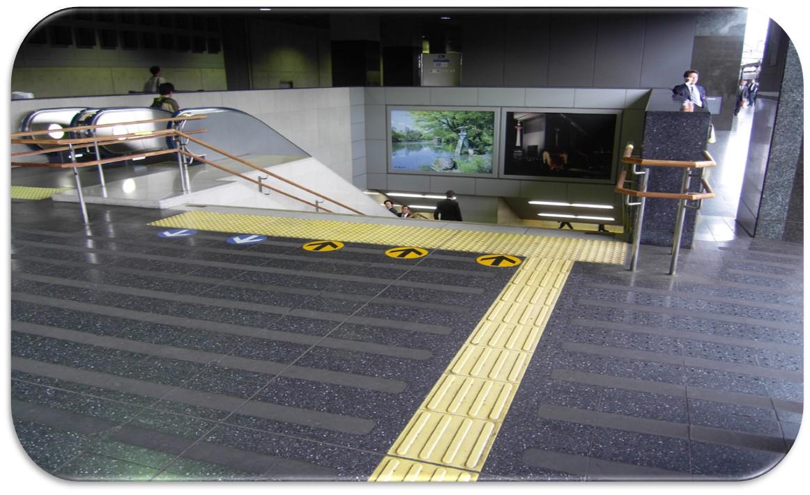 LTA - VISA & Projeto de Acessibilidade